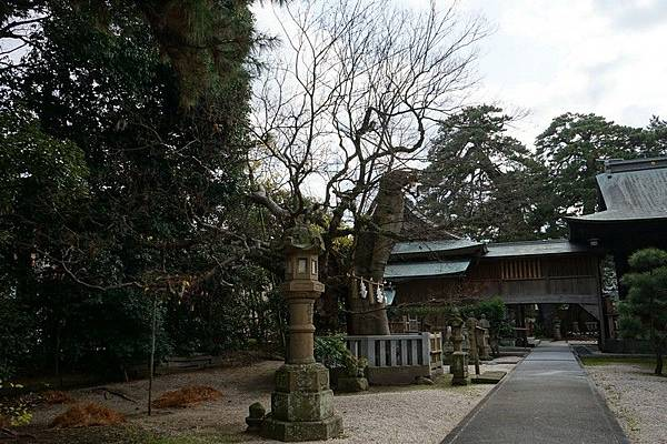 205 松江賣布神社 15.jpg