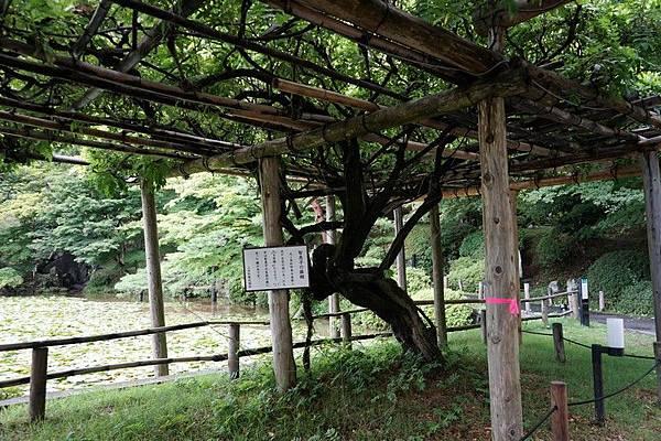 D05 二本松城跡 104.jpg