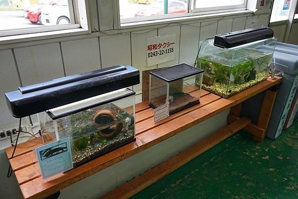 D06 東北野生動物園 27.jpg