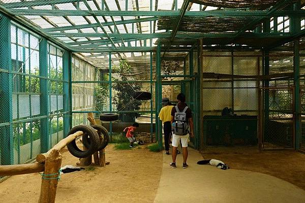 D06 東北野生動物園 38.jpg