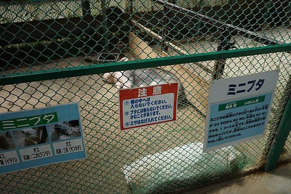 D06 東北野生動物園 50.jpg