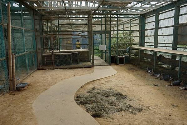 D06 東北野生動物園 46.jpg