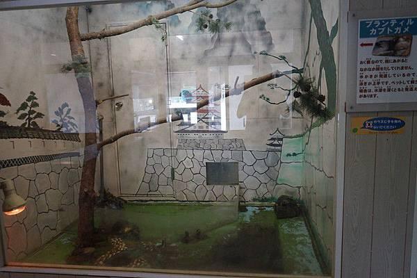 D06 東北野生動物園 80.jpg