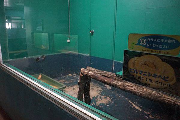 D06 東北野生動物園 87.jpg