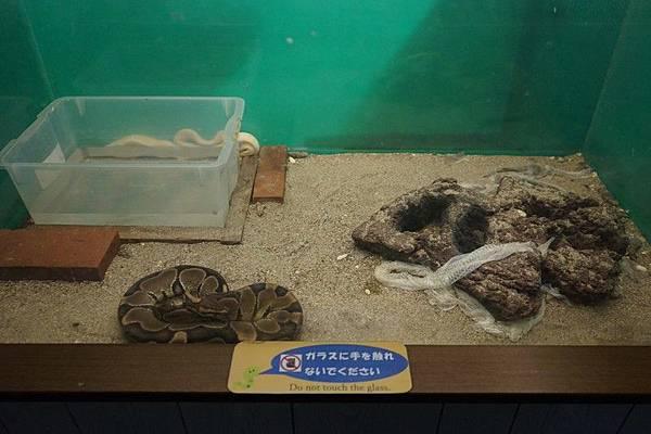 D06 東北野生動物園 89.jpg