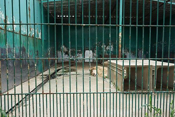 D06 東北野生動物園 108.jpg