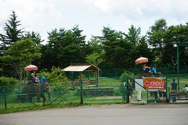 D06 東北野生動物園 104.jpg