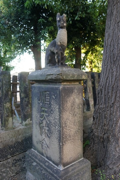 D08 郡山松木稻荷神社 11.jpg