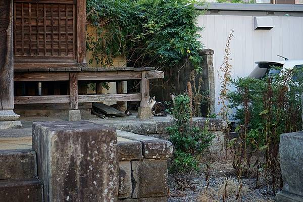D09 郡山古峯神社 05.jpg