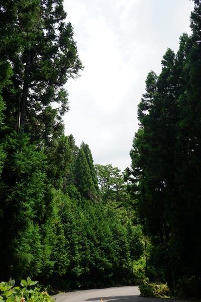 E06 滝根町街景 12.jpg