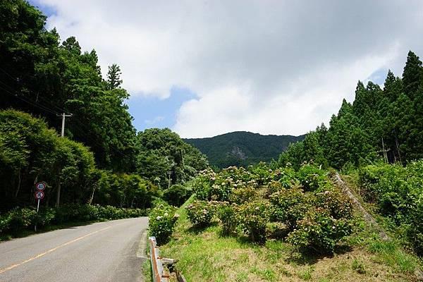 E06 滝根町街景 16.jpg