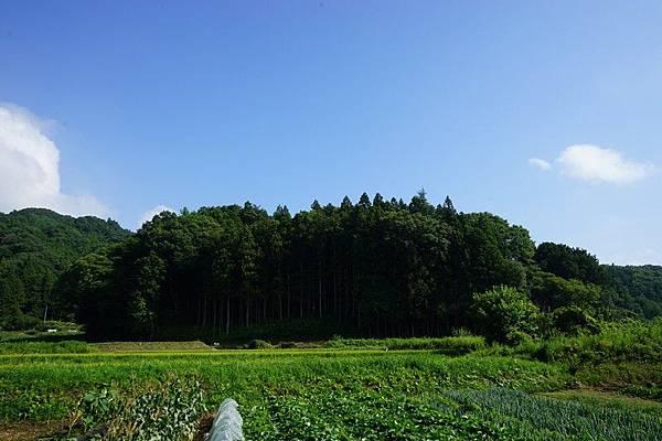 E06 滝根町街景 81.jpg
