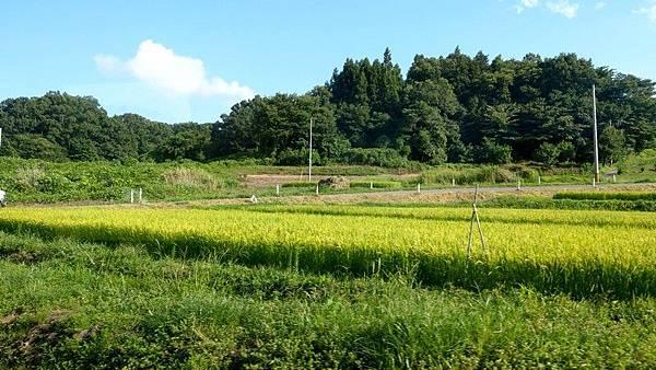 E10 磐越東線景 14.jpg