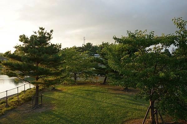 E12 荒池公園 12.jpg