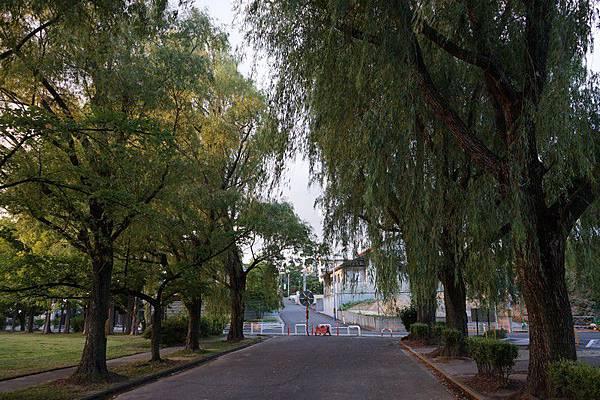 E12 荒池公園 26.jpg