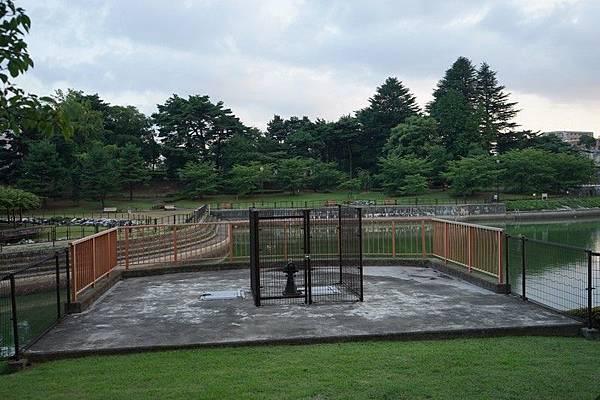 E12 荒池公園 36.jpg