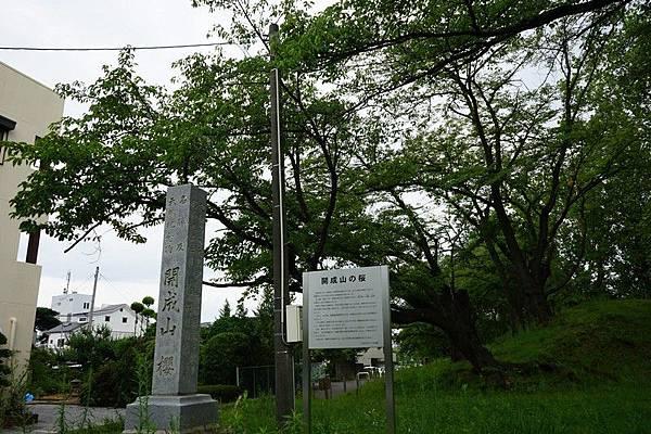 F02 郡山街景 14.jpg