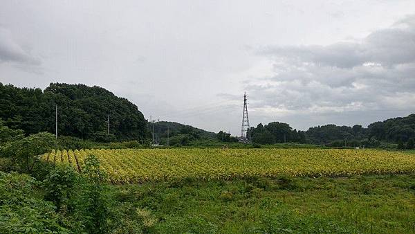 F02 郡山街景 31.jpg