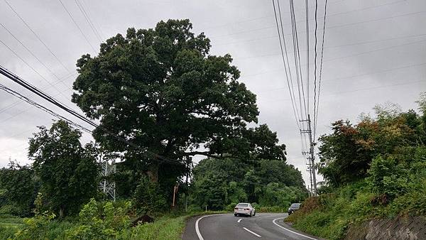 F02 郡山街景 38.jpg