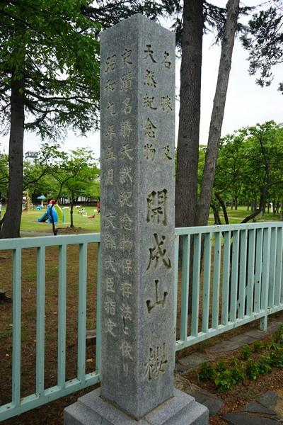 F08 開成山公園 42.jpg