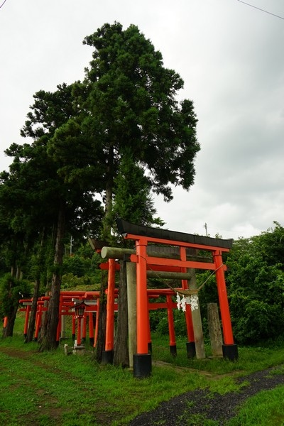 F12 高屋敷稻荷神社 38.jpg