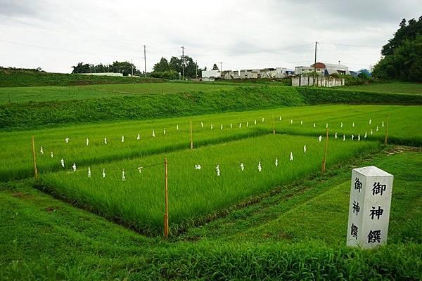 F12 高屋敷稻荷神社 37.jpg