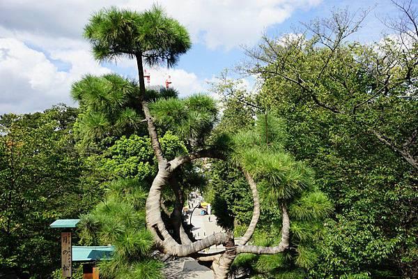 L03 上野公園清水觀音堂 12.jpg