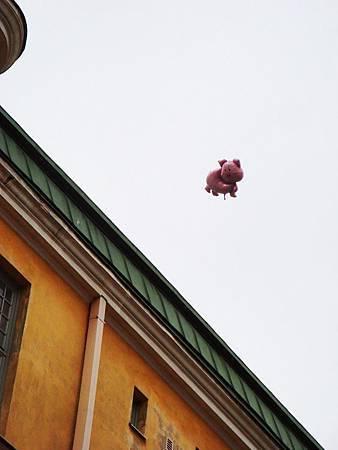 飛走的小豬