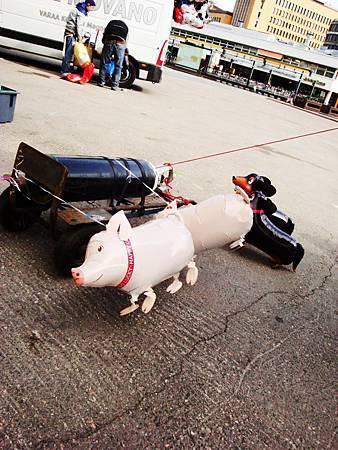 地上跑的小豬和臘腸狗