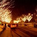 雪之夜3.jpg