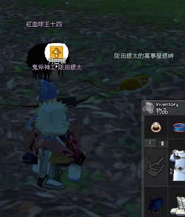 mabinogi_2009_08_01_016.JPG