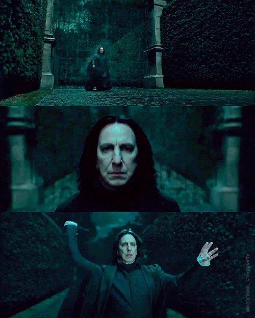 Severus-Snape-Deathly-Hallows-severus-snape-16405328-500-623.jpg