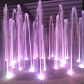 紫水柱.jpg