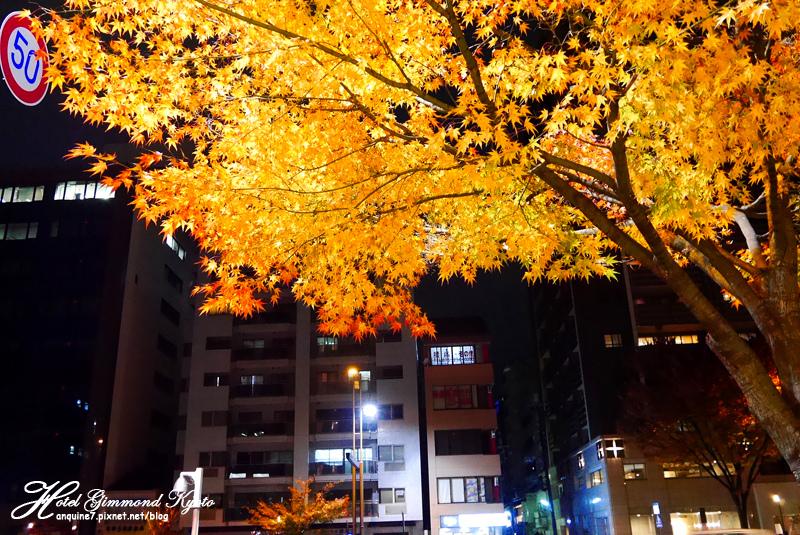 廖西瓜@日本京奈自由行Hotel Gimmond Kyoto京門飯店31