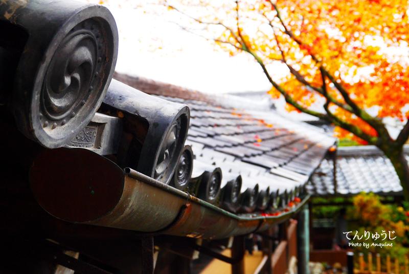 廖西瓜@日本京奈自由行嵐山世界遺產天龍寺&竹林34