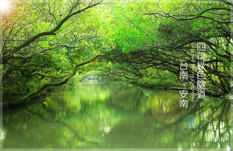 廖西瓜@台南安南區四草紅樹林綠色隧道台版亞馬遜封面