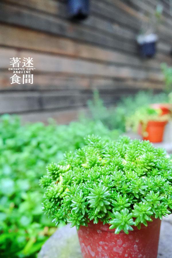 廖西瓜@雲林斗六著迷食間ENCHANTED CAFE5