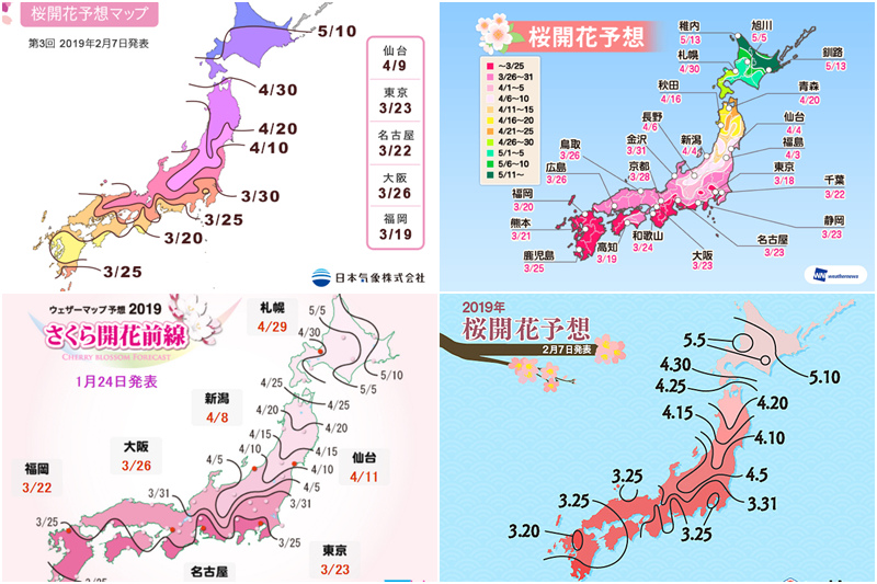 2019櫻花前線預測