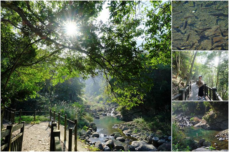 蓬萊溪護魚步道.jpg