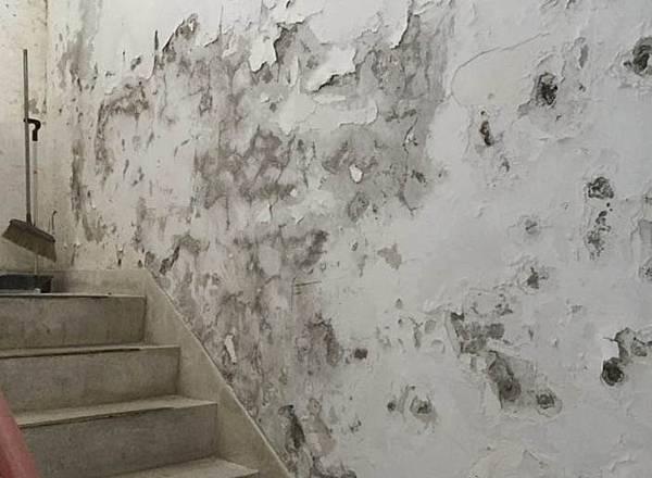 壁癌漏水是多數人買房最頭痛的問題.jpg