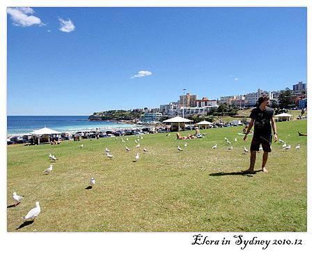 Sydney-Bondi Beach-10