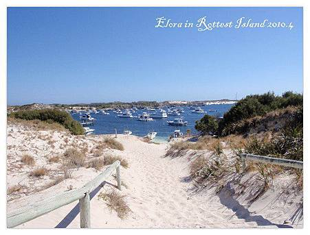 Rottest Island (27)