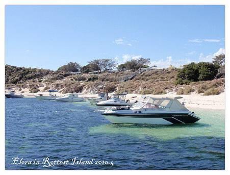 Rottest Island (36)