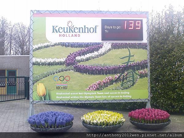 Keukenhof2008 (12)