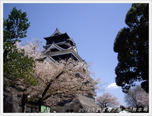 Kumamoto07
