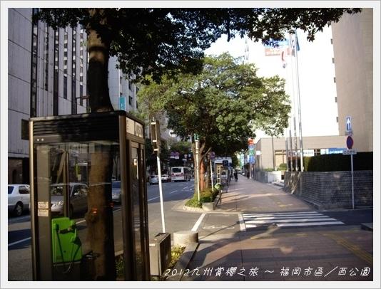 NishiPark46