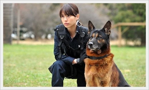 DOG x POLICE 05