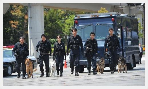 DOG x POLICE 06