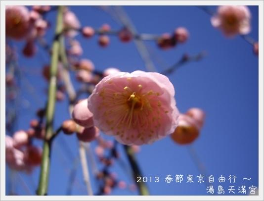 2013Tokyo D6-22