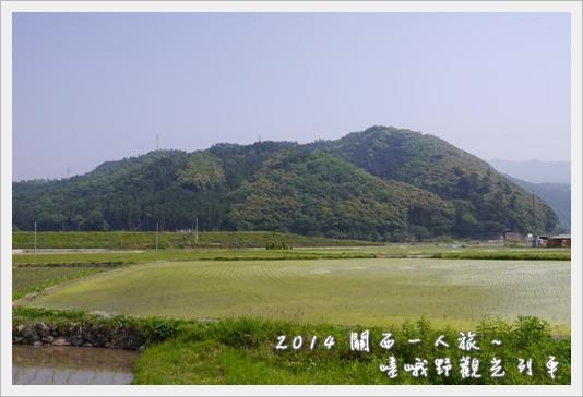 Torroko05.JPG